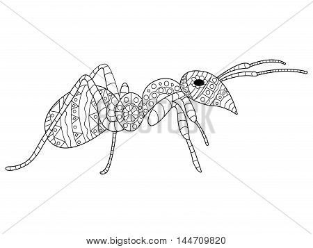 Ant Coloring pet adult vector illustration. Anti-stress coloring for adults. Zentangle style. Black and white insect