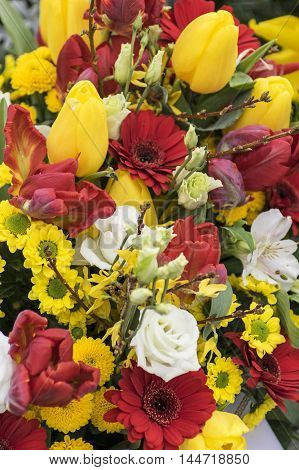 Colored Bouquet with several sorts of spring flowers