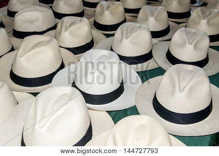 Accessory - Panama Hats