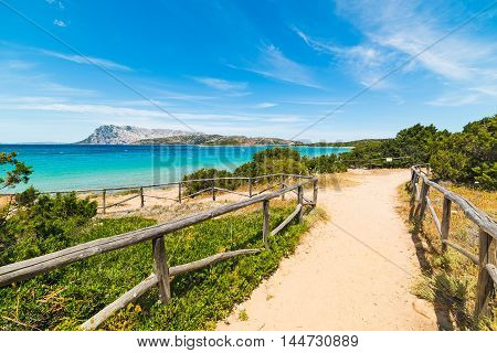 dirt path to the sea in Sardinia Italy