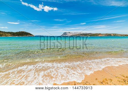 golden shore in Capo Coda Cavallo Sardinia
