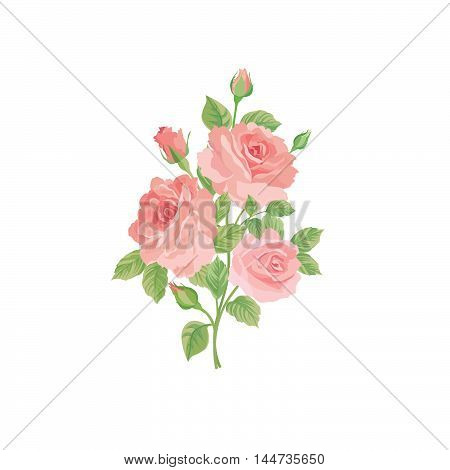 Floral Bouquet Isolated Over White Background. Flower Rose Posy. Greeting Card With Flowers Roses. F