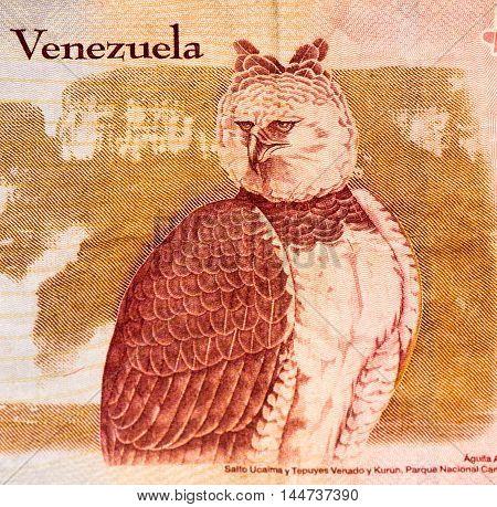 10 Venezuelan bolivares bank note. Bolivares fuertes is national currency of Brasil