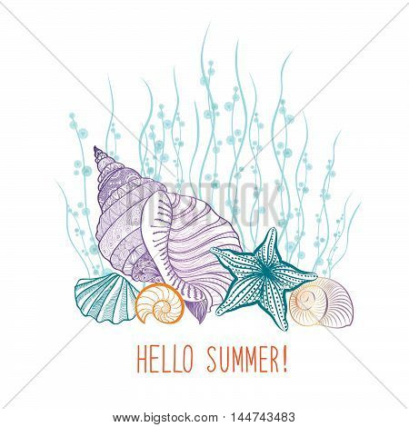 Summer Background. Summer Holidays Cover With Seashell Sea Star. Hello Summer Greeting Card. Doodle