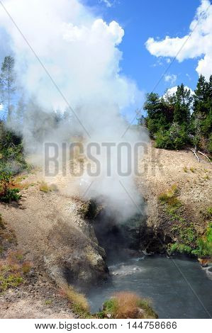 Dragon's Mouth Spring spews steam and smoke from entrance. Hot Spring is in the Mud Volcano area of Yellowstone National Park.
