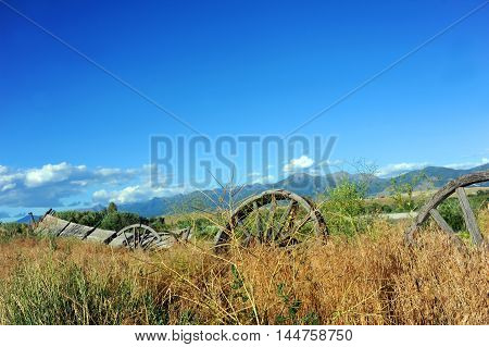 Overgrown and almost buried with weeds wagon and wheels lay forgotten in Paradise Valley Montana.