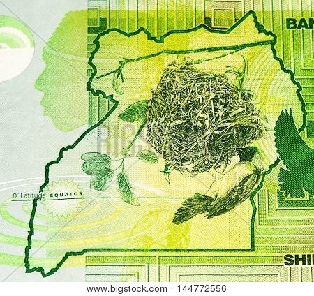 5000 Ugandan shillings bank note. Ugandan shilling is the national currency of Uganda