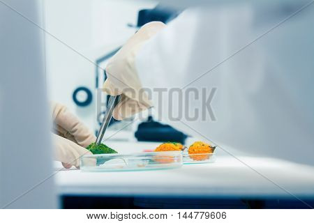 Scientist Working,scientists Working At The Laboratory,scientist Leaning Against In Laboratory,scien