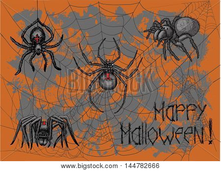 Halloween poster with spiders, cobweb and lettering on textured background. Doodle line art illustration and graphic sketch, hand drawn vector with icons of tarantula and black widow
