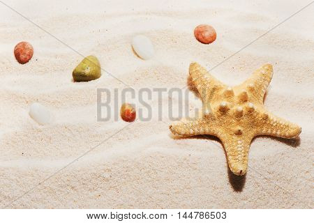 Starfish And Sea Stones On Beach Sand