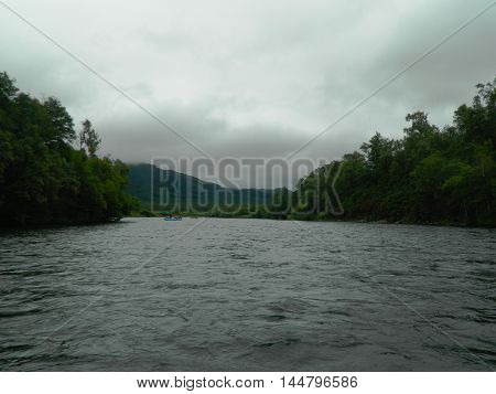 Landscape View Of Green Forest With Flowing Rafts