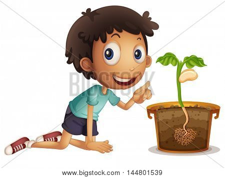 Boy planting seed in the pot illustration