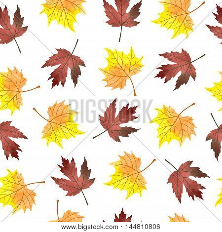 Watercolor maple leaves seamless pattern. Vector background with autumn orange and crimson leaves isolated on white.