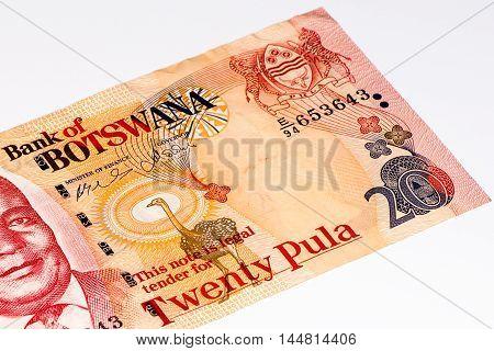 20 pula of Botswana.Pula is the national currency of Botswana