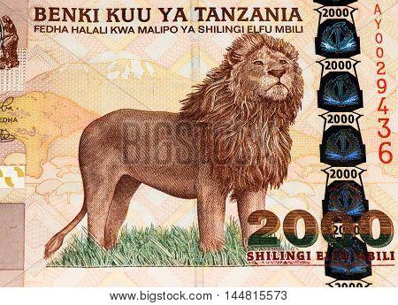 2000 Tanzanian shillings bank note. Tanzanian shilling is the national currency of Tanzania