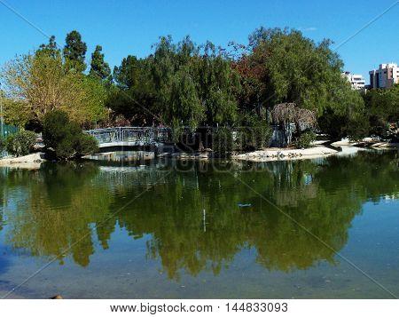 Lago en parque de Murcia con mucha vegetación