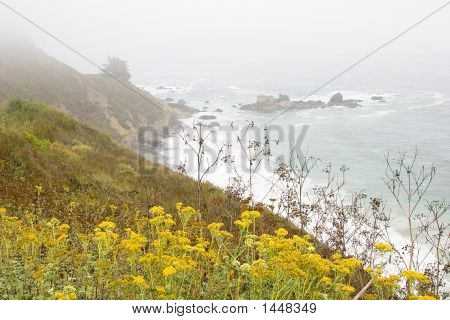 Seascape At Big Sur, California Usa - Horizontal