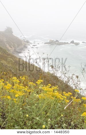 Seascape At Big Sur - Vertical
