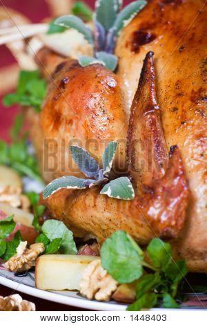 Crispy Turkey