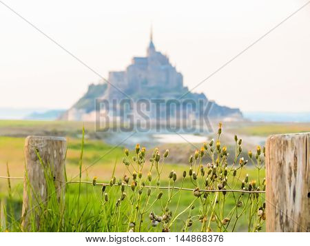 Landscape of Brittany and Mont Saint-Michel as background, France