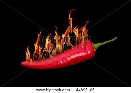 Red hot chili pepper burns on black background