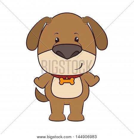 dog mascot bone collar puppy animal adorable cartoon mascot character vector illustration