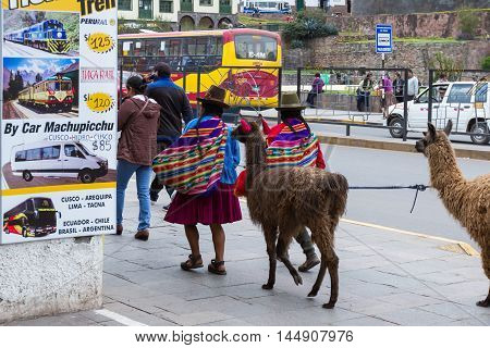 Native Cusco Women With Llamas