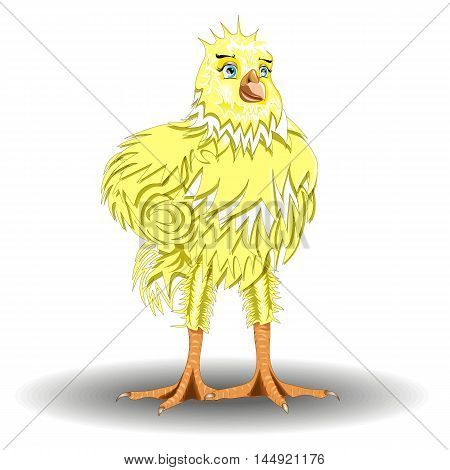 athletic cute cartoon yellow chicken isolated on white background