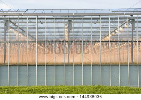 Frontage of a Greenhouse in