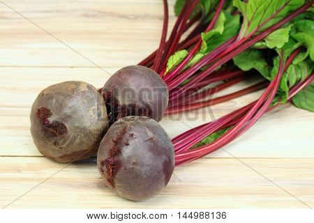 Fresh organic red beets just picked up from the garden beetroots are washed