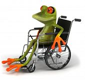 Frog in a wheelchair poster