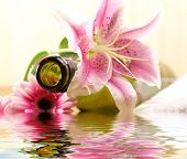 Bottle of massaging oil over spa background poster