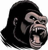 Vector illustration of head of wild ferocious gorilla screaming showing fangs poster