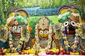 Indian deities on the altar: Lord Jagannath with his elder brother Balabhadra and sister Subhadra. poster