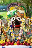 Indian deity Jagannath on the altar decorated with flower garlands. poster