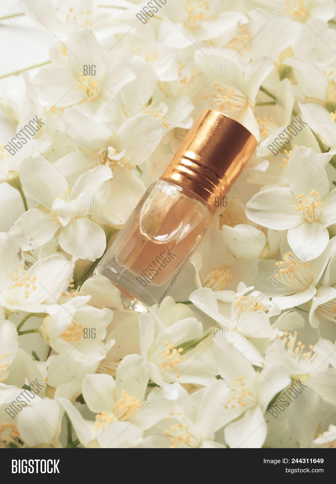 Indian jasmine attar image photo free trial bigstock indian jasmine attar oil natural jasmine flower oil for relaxation and bliss izmirmasajfo