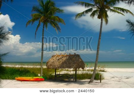 Sanibel Island Palms And Hut