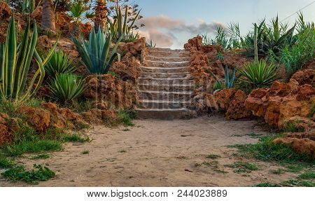 Natural Stone Stairway With Green Bushes On Both Sides And Partly Cloudy Sky At Montaza Public Park