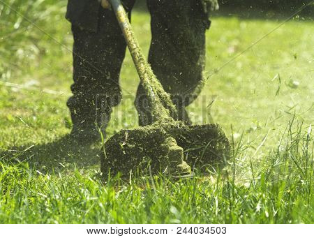 The man mowing green wild grass field using brush cutter mower or power tool string lawn trimmer. To mow a grass with the trimmer. Trimer mows a lawn. Care of a lawn. poster