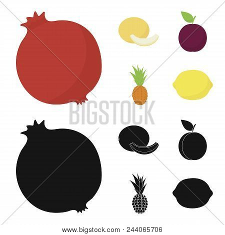 Melon, Plum, Pineapple, Lemon.fruits Set Collection Icons In Cartoon, Black Style Vector Symbol Stoc