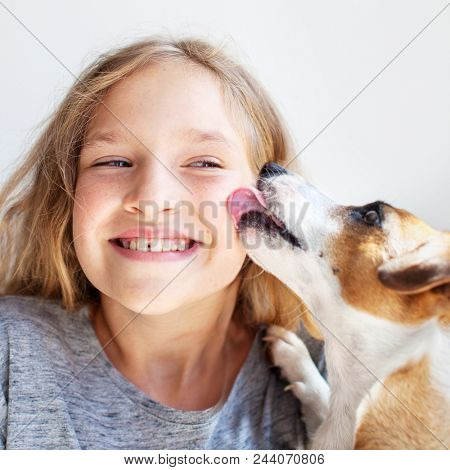 Happy child with dog. Portrait girl with pet. Jack Rassell licks a teen