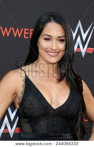 LOS ANGELES - JUN 6:  Nikki Bella at the WWE For Your Consideration Event at the TV Academy Saban Media Center on June 6, 2018 in North Hollywood, CA