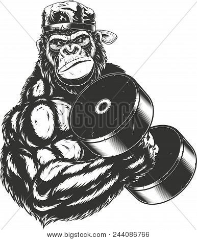 Vector illustration, ferocious gorilla bodybuilder performs an exercise with a large dumbbell poster