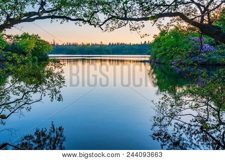 Bolam Lake Framed By Trees, A Country Park Located In The Beautiful Northumberland Countryside, It I