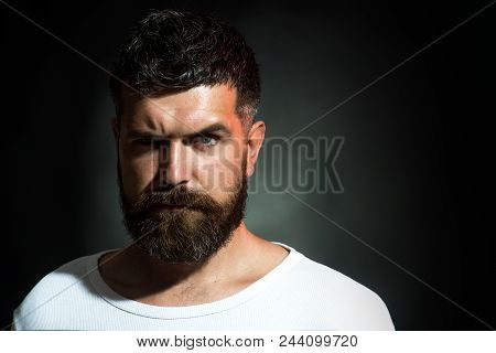 Stylish Bearded Man. Serious Man With Beard And Mustache. Sexy Look Of Male Model. Cool Bearded Man