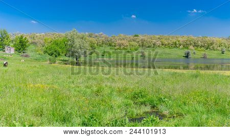 Panoramic May Landscape With Suha Sura River In Vasylivka Village Near Dnepr City, Central Ukraine