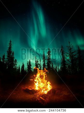 A Warm And Cosy Campfire In The Wilderness With Forest Trees Silhouetted In The Background And The S
