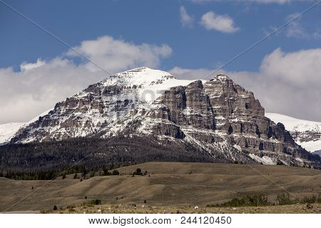 Wyoming Mountain With Snow; Cattle Grazing In Hills