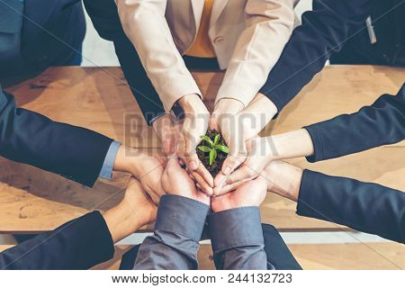 Hands Business Team Work Cupping Young Plant Nurture Environmental And Reduce Global Warming Earth.