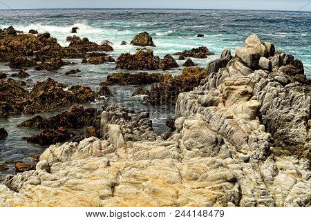 Pacific Ocean Asilomar State Marine Reserve Monterey California